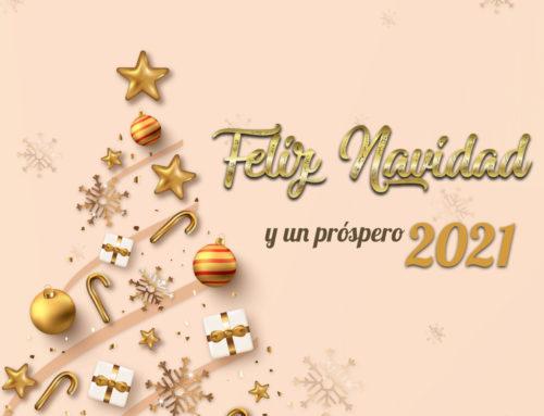 Resumen 2020 Aramar Suministros para el Vidrio